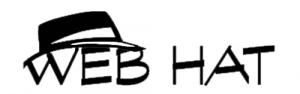Web Site si Promovare Logo